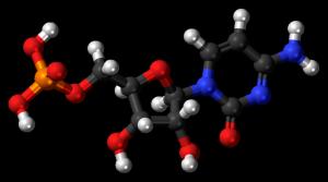 cytosine 3D