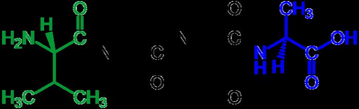 Tetrapeptide