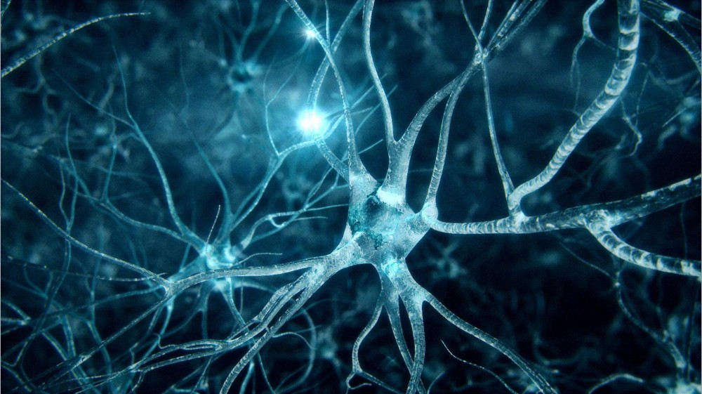 neurons_synapse_abstract_biology_brains_3d_hd-wallpaper-1795266-e1442814224552